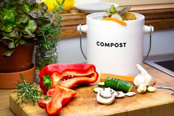 8 Best Kitchen Composter (Electric Composter Machine For Home)